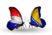 Two Butterflies With Flags On Wings As Symbol Of Relations Holland And Bosnia And Herzegovina
