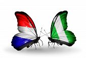 Two Butterflies With Flags On Wings As Symbol Of Relations Holland And Nigeria