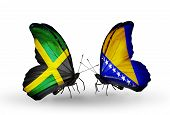 Two Butterflies With Flags On Wings As Symbol Of Relations Jamaica And  Bosnia And Herzegovina
