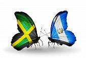Two Butterflies With Flags On Wings As Symbol Of Relations Jamaica And Guatemala