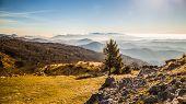 Autumn Morning On A Mount Of Italian Alps