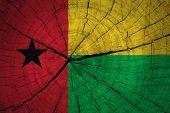 foto of guinea  - Grunge Guinea - JPG