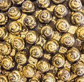 Traditional Gold Buddha Hair Pattern