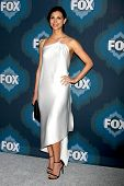 LOS ANGELES - JAN 17:  Morena Baccarin at the FOX TCA Winter 2015 at a The Langham Huntington Hotel on January 17, 2015 in Pasadena, CA