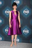 LOS ANGELES - JAN 17:  Carla Gugino at the FOX TCA Winter 2015 at a The Langham Huntington Hotel on January 17, 2015 in Pasadena, CA