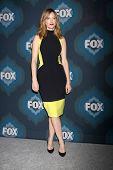 LOS ANGELES - JAN 17:  Judy Greer at the FOX TCA Winter 2015 at a The Langham Huntington Hotel on January 17, 2015 in Pasadena, CA