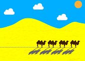 Flat camels going through the desert