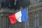 picture of versaille  - The flag of france front of the palace in Versailles  - JPG