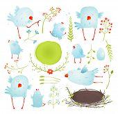 Постер, плакат: Cartoon Fun and Cute Baby Birds Collection