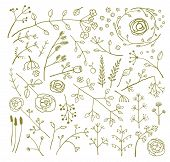 Field Flowers and Plants Decoration Collection