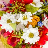 Bunch of flowers with small depth of field