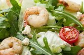 picture of rocket salad  - Fresh gourmet seafood salad with lettuce rocket and corn greens shrimps cherry tomatoes cheese served in white plate - JPG