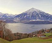 Swiss Rural Landscape Near Thun Lake At Sunrise