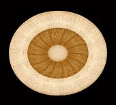 abstract donut shaped design with Balsa and Pecan wood