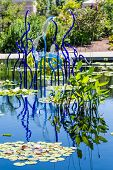 pic of lilly  - Blue Glass sculptures rising out of blue lake with lilly pads in Denver - JPG
