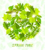 round spring background from leaves.