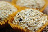 Sesame Coated Glutinous Rice Cookies
