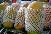 pic of papaya fruit  - Fresh papaya fruit in tropical island - JPG