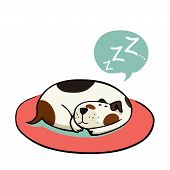 foto of spotted dog  - Cute cartoon dog sleeping on the mat - JPG