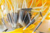 picture of marigold  - Macro shot of marigold flower showing natural pattern - JPG