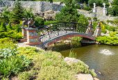 image of vegetation  - Decorative arched bridge over a pond with statues of griffins among the vegetation of the park