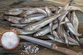 stock photo of caught  - Freshly caught small fish - JPG