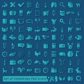 foto of veterinary  - Set of veterinary flat icons for Web and Mobile Applications - JPG