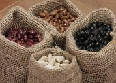 pic of pinto bean  - White beans, kidney beans, pinto beans and black beans, in small bags.