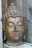 Buddha W/Old Wood