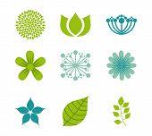 pic of obituary  - flowers design over  white  background vector illustration - JPG
