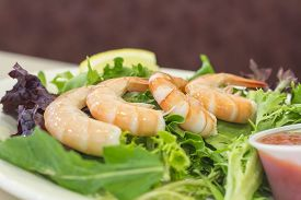 image of shrimp  - Shrimp cocktail salad with legs on shrimp and lemon wedge - JPG