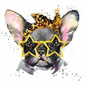 French Bulldog. Cute puppy dog. Watercolor puppy dog illustration. French Bulldog breed. unusual ill poster