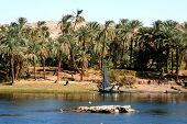 Living At River Nile