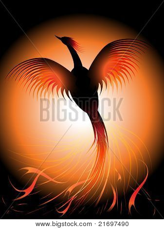 Picture or Photo of Vector illustration of a flying phoenix risen from the fire