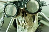 picture of day judgement  - Human skull with insane look and goggles  - JPG