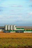 moderne Tiere farm