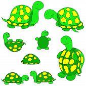 Turtle Clip-Art.
