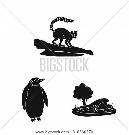 poster of Vector Illustration Of Fauna And Entertainment Icon. Set Of Fauna And Park Vector Icon For Stock.