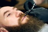 Close Up Cropped Photo Of Clients Man Face While Styling Red Mustache And Beard. Scrupulous Cutting  poster