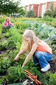 Young Girls Working In Vegetable Garden