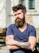 Bearded Man Outdoor. Beard Care And Barbershop. Brutal Male With Perfect Style. Bearded Man With Lus poster