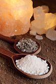 Sea Salt In Spoon