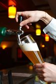 image of bartender  - the bartender pours the beer into a glass from the tap - JPG