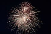 Fireworks With A Dark Black Background, Bright Beautiful Colorful Firework. Colored Firework Lights  poster