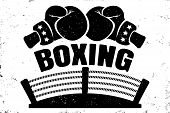 Vector Vintage Logo For A Boxing With Two Gloves And Boxing Ring. Retro Emblem For Boxing. Poster Of poster