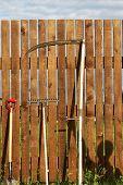 Garden Tool Set Over Wood Backyard Fence