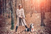 Woman Walking With Husky Dog Autumn Forest. Pedigree Dog Concept. Girl Enjoy Walk With Husky Dog. Be poster