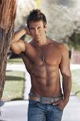 pic of hunk  - Portrait of a beautiful young muscular man leaning against a tree in nature - JPG