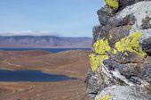 Bright lichen on the rock on island Olkhon  Baikal