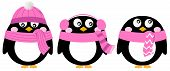 Cute Pink Cartoon Penguin Set Isolated On White